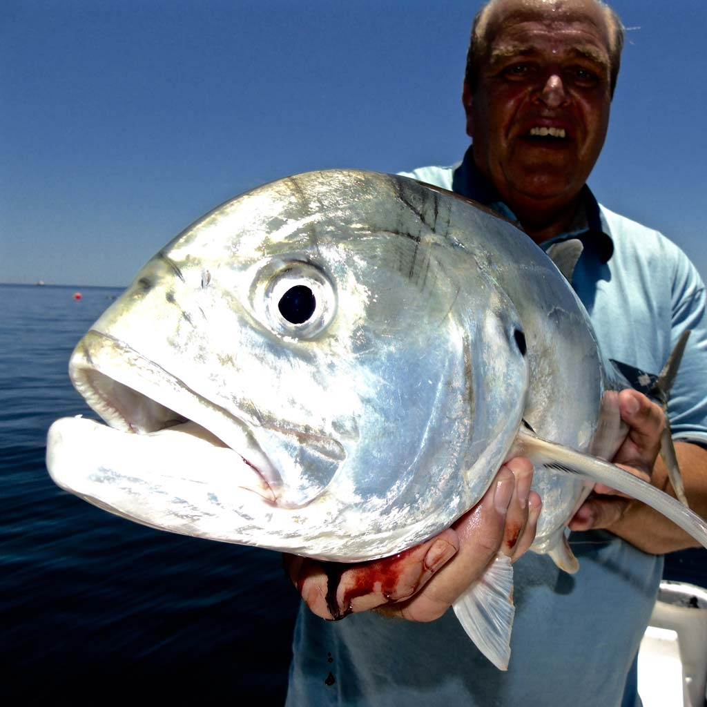 Jack Crevalle being held by angler